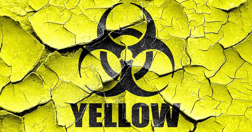 Tropenkrankheit Gelbfieber - Lebensgefahr durch Mückenstiche