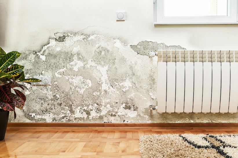 Luftfeuchtigkeit Ideal die ideale luftfeuchtigkeit in wohnräumen