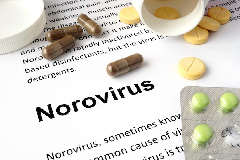 norovirus erste anzeichen erkennen und handeln. Black Bedroom Furniture Sets. Home Design Ideas